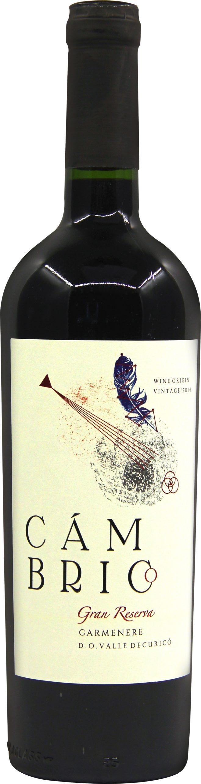 寒武纪卡门干红葡萄酒